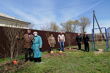 1 мая в 10  часов утра в Акчернском сельско поселении прошла акция  «Дерево Победы».